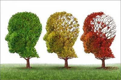Свойства личности, которые увеличивают риск болезни Альцгеймера